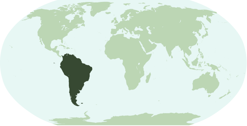 Datei:SouthAmericaLocation.png
